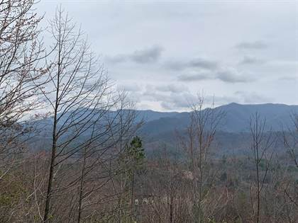 Lots And Land for sale in Lot#10 Horse Leg Lane 10, Andrews, NC, 28901