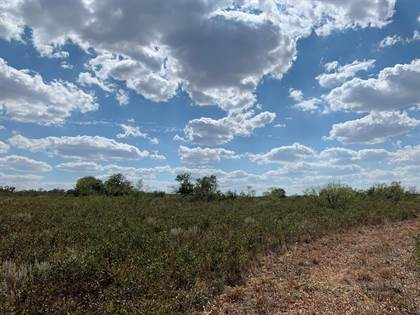 Farm And Agriculture for sale in 0 Farm Road 261, Spur, TX, 79370