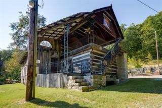 Single Family for sale in 199 Tyree Hollow, Hendersonville, TN, 37075