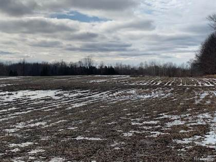 Lots And Land for sale in 00 HURDS CORNER Road, Mayville, MI, 48744