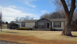 Single Family for sale in 1013 Choctaw St, Shamrock, TX, 79079