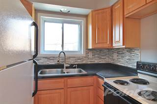 Apartment for rent in 421 S. Elmwood Ave., Oak Park, IL, 60302