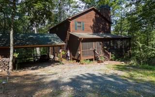 Single Family for sale in 22 KINGS CT, Ellijay, GA, 30540