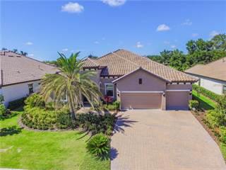 Single Family for sale in 1405 VIA VERDI DRIVE, Palm Harbor, FL, 34683