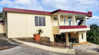 Residential Property for sale in Camuy, Bo. Zanjas sect los Vargas, Camuy, PR, 00627
