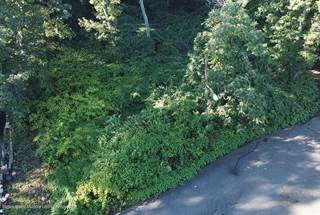 Land for sale in 41 Shields Place, Staten Island, NY, 10301