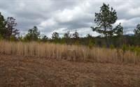 Photo of LT 67 NORTHSHORE, 30512, Union county, GA