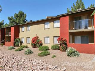 Apartment for rent in Palm Crest at Station 40, Phoenix, AZ, 85033