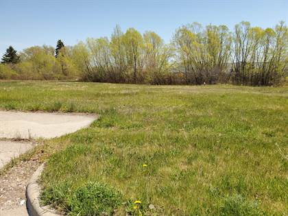 Lots And Land for sale in 619 S Ripley Street, Alpena, MI, 49707