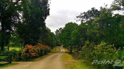 Residential Property for sale in Terreno South, Lodlod, Lipa, Batangas, Lipa City, Batangas