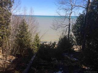 Single Family for sale in 6248 N Lakeshore Road, Greater Forestville, MI, 48465