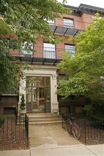 Apartment for rent in 50 Park Vale Avenue, Boston, MA, 02134