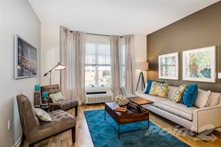 1 Bedroom Apartments for Rent in New Jersey 1216 1 Bedroom