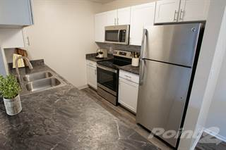 Apartment for rent in Apres Apartment Homes, Denver, CO, 80247