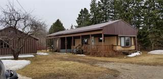 Residential Property for sale in 8335 Thompson ST, Newberry, MI, 49868