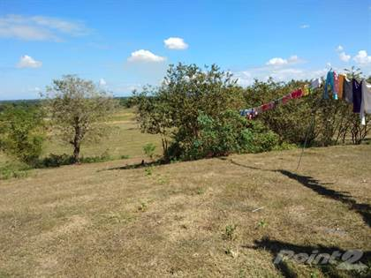 Farm And Agriculture for sale in Malagayoma Road, Paniqui, Tarlac, Paniqui, Tarlac