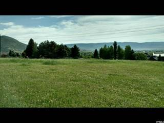 Farm And Agriculture for sale in 943 W SWISS ALPINE RD N, Midway, UT, 84049