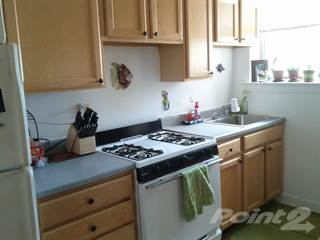 Apartment for rent in 2450-58 W. Wilson/4601-11 N. Campbell, Chicago, IL, 60625