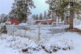 Single Family for sale in 379 Neal Rd, Bailey, CO, 80421
