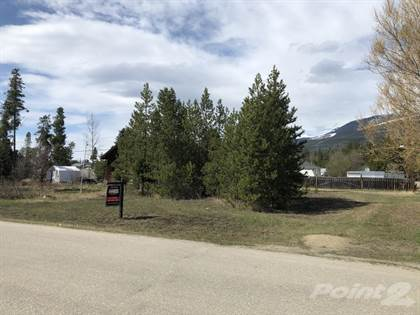 Lots And Land for sale in 1022 6th Ave, Valemount, British Columbia, V0E 2Z0