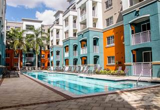 Apartment for rent in Red Road Commons Student Living - Anastasia - Future, South Miami, FL, 33143
