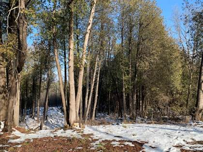 Residential Property for sale in 8441 Cooper Hill Rd, Metcalfe, Ontario, K0A 2P0
