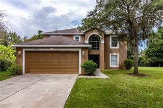 Single Family for sale in 19216 WOOD SAGE DRIVE, Tampa, FL, 33647