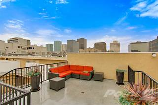Houses & Apartments for Rent in Koreatown CA - From $428 a month ...