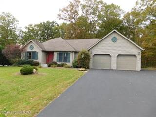 Single Family for sale in 10 Birch Ct, Drums, PA, 18222