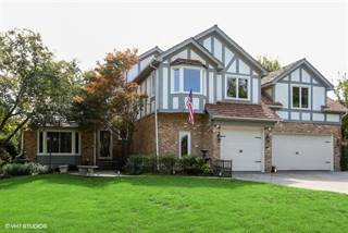 Single Family for sale in 948 Norwood Court, Naperville, IL, 60540