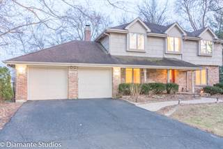 Single Family for sale in 1040 ROYAL BOMBAY Court, Naperville, IL, 60563