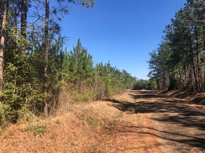 Lots And Land for sale in 0 Spitchley Rd, Hazlehurst, MS, 39083