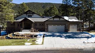 Single Family for sale in 680 Chipmunk Drive, Woodland Park, CO, 80863