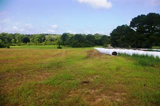 Farm And Agriculture for sale in 2107 Foxchase Road, Osyka, MS, 39657