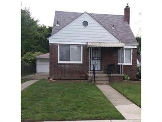 Single Family for sale in 15329 HEYDEN, Detroit, MI, 48223