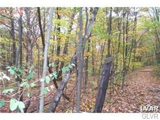 Residential Property for sale in 0 West Mountain Road, Bushkill, PA, 18091