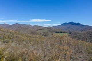 Other Real Estate for sale in 366 (Lot 11) Linville Oaks Drive, Linville, NC, 28657