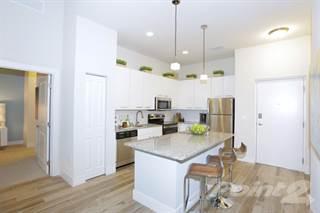 Apartment for rent in PARC3400 - PARC C2, Davie, FL, 33314