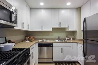 apartment for rent in queens boulevard queens ny