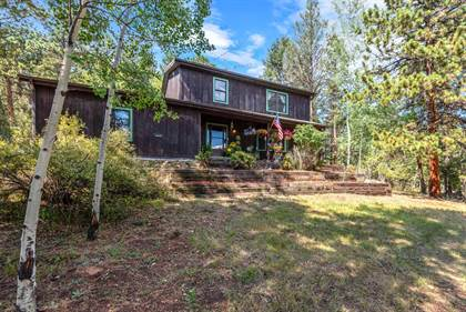 Residential Property for sale in 13713 South Wamblee Valley Road, Conifer, CO, 80433