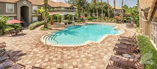 Apartment for rent in Park Crest at Innisbrook - Westchester, Palm Harbor, FL, 34683