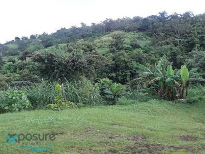 Residential Property for sale in PR 803 INTERIOR KM 0.1, Dos Bocas, PR, 00783