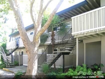 Apartment en renta en Sycamore Park, San Jose, CA, 95117