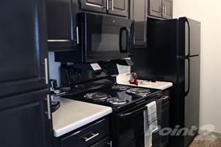 Apartment for rent in The Westside - Willow - One Bedroom/One Bath, Plano, TX, 75075