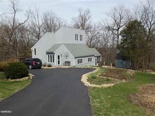 Single Family for sale in 1131 N Clark, Galena, IL, 61036