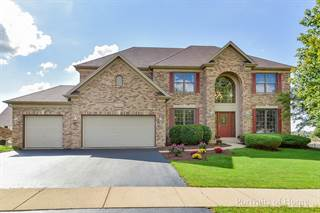 Single Family for sale in 13502 Summergrove Drive, Plainfield, IL, 60585