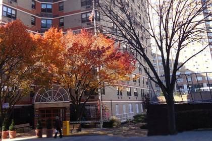 Apartment for rent in 138-49 Elder Avenue, Flushing, NY, 11355