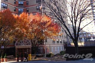 Apartment for rent in B'nai B'rith of Queens, Queens, NY, 11355