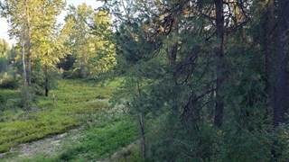 Land for sale in Lot 4 Thunder Ridge, Rathdrum, ID, 83858