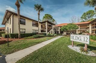 Condo for sale in 1203 HAMMOCK PINE BOULEVARD 1203, Clearwater, FL, 33761